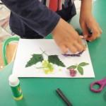 Tworzenie zielnika na zajęciach